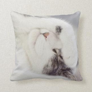 Sleepy cat Pillow