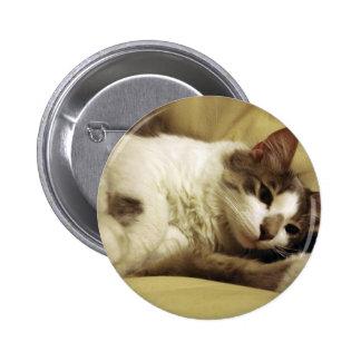 Sleepy Cat Pins