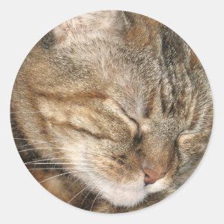 Sleepy Cat Round Sticker