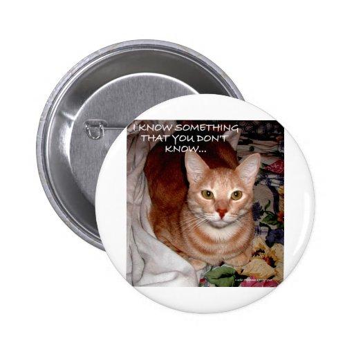 SLEEPY CATS PIN