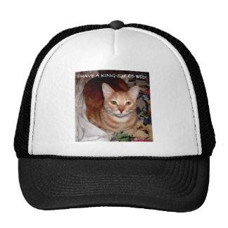 SLEEPY CATS HATS