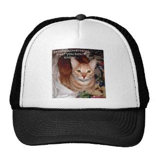 SLEEPY CATS MESH HATS