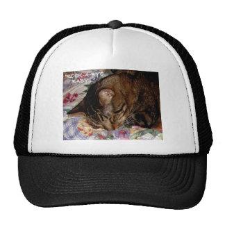 SLEEPY CATS HAT