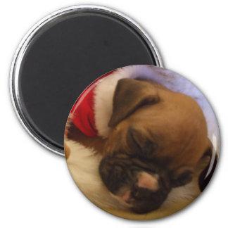 Sleepy Christmas Boxer Puppy magnet