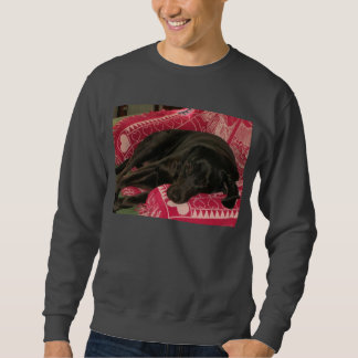Sleepy Dog Shirts