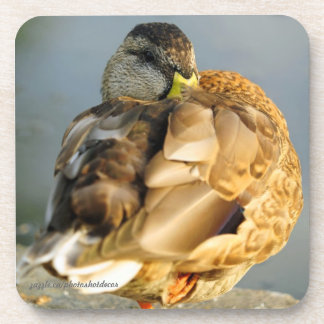 SLEEPY DUCK DRINK COASTER