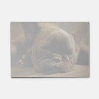 Sleepy French Bulldog Post-it® Notes