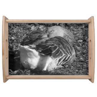 Sleepy Graylag Goose (Black and White) Serving Tray