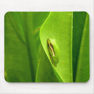 Sleepy Green Frog Mouse Pad