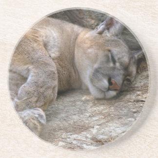 Sleepy Head Drink Coaster