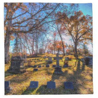 Sleepy Hollow Cemetery New York Napkin