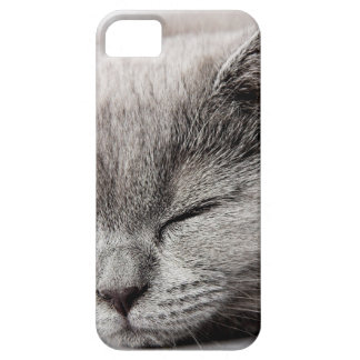 Sleepy Kitten Barely There iPhone 5 Case