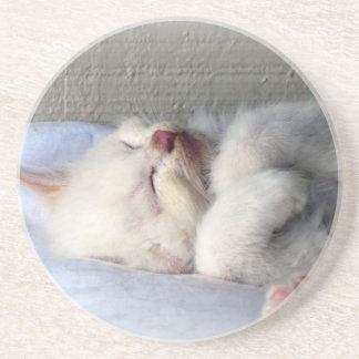 Sleepy Kitten Coaster