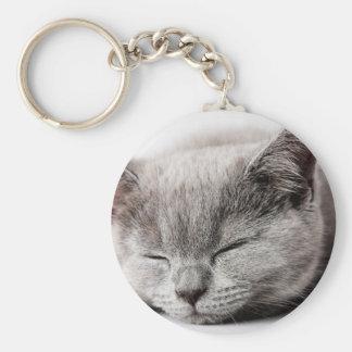Sleepy Kitten Key Ring