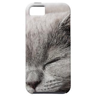 Sleepy Kitten Tough iPhone 5 Case