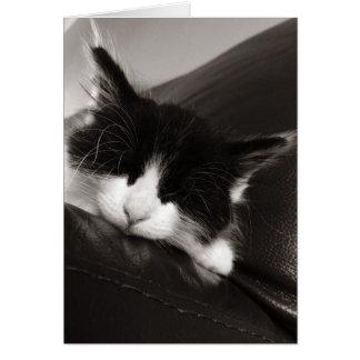 Sleepy Kitty Cat Greeting Card