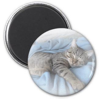 Sleepy Kitty Fridge Magnet