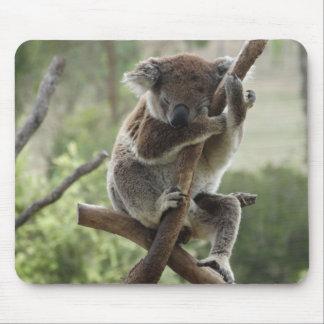 Sleepy Koala Mousepad