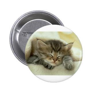 Sleepy Nap Time Kitten 6 Cm Round Badge