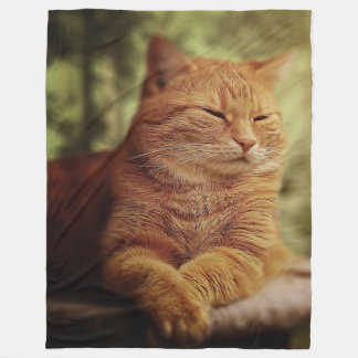 Sleepy Orange Cat on Large Fleece Blanket