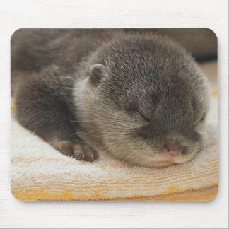 Sleepy Otter Mouse Pad