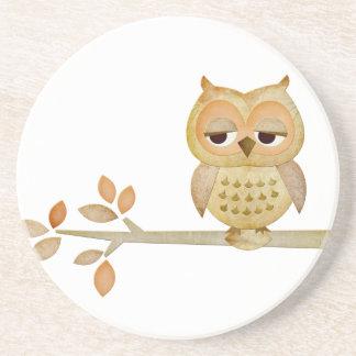 Sleepy Owl in Tree Coaster