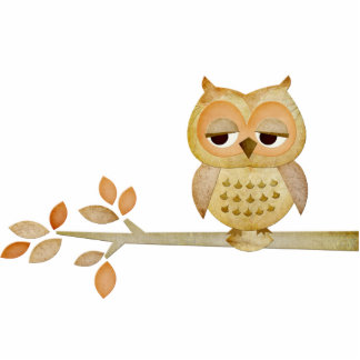 Sleepy Owl in Tree Photo Sculpture