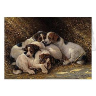 Sleepy Puppies, Card