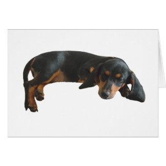 Sleepy Puppy Note Card