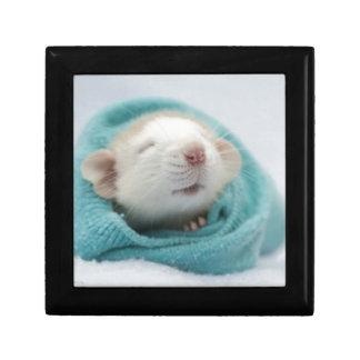 Sleepy Rat Small Square Gift Box