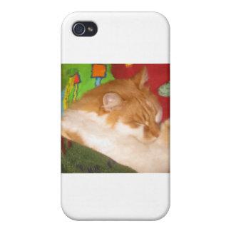 Sleepy Red Cat iPhone 4 Covers