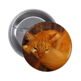 Sleepy Red Cat - Will you finally let me sleep Pinback Button