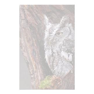 Sleepy Screech Owl Custom Stationery