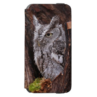 Sleepy Screech Owl Incipio Watson™ iPhone 6 Wallet Case