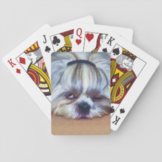 Sleepy Shih Tzu Dog Playing Cards