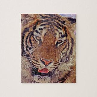 Sleepy Tiger - Jigsaw Puzzle