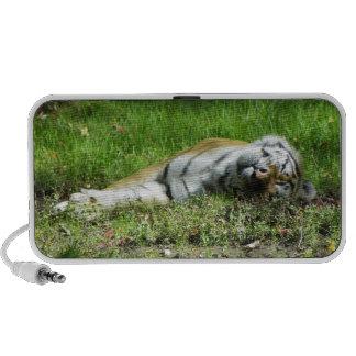 Sleepy Tiger iPod Speaker