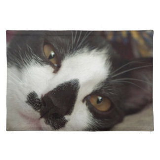 Sleepy Tuxedo Cat Placemats
