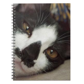 Sleepy Tuxedo Cat Spiral Notebook