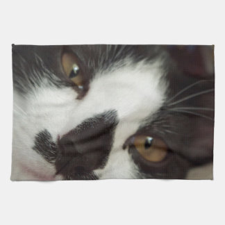 Sleepy Tuxedo Cat Tea Towel