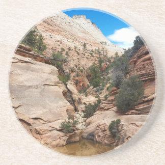 Slick Rock Zion National Park Utah Coasters