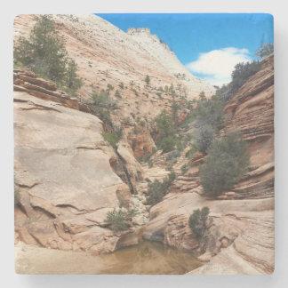 Slick Rock Zion National Park Utah Stone Beverage Coaster
