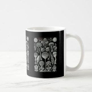 Slime Moulds Coffee Mug