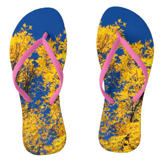 Slippers - autumn leaves thongs