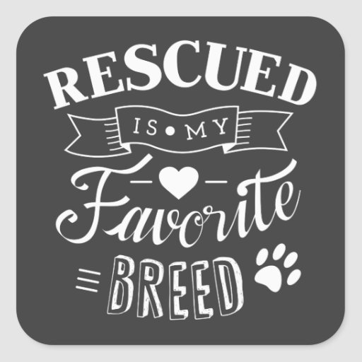 Slogan Rescued is my favorite breed Grey Stickers