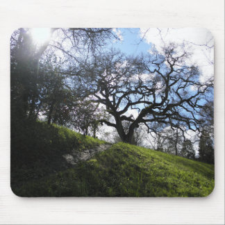 Slope and Oak Mouse Pad
