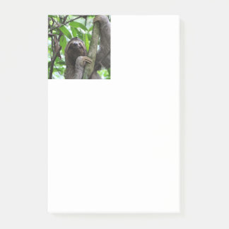 Sloth_20171101_by_JAMFoto Post-it Notes
