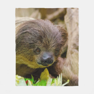 Sloth_20171107_by_JAMFoto Fleece Blanket