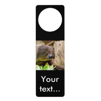 Sloth_20171108_by_JAMFoto Door Hanger