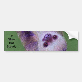 Sloth Bumper Sticker